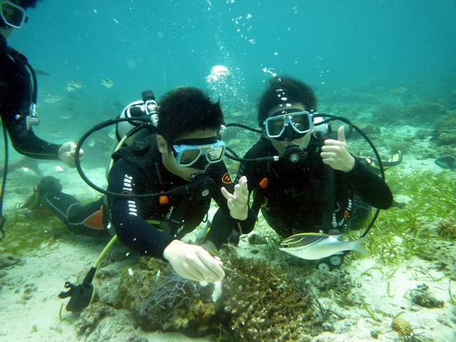 Hilutungan Is. Discovery Diving